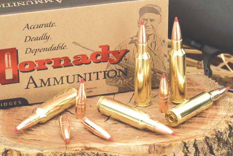 1361771432355_09-gmx_ammo_bullets2.jpg